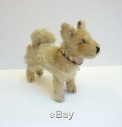 Vintage Steiff LAIKA THE SPACE DOG 1958-1959 Mohair Original Collar 1950s